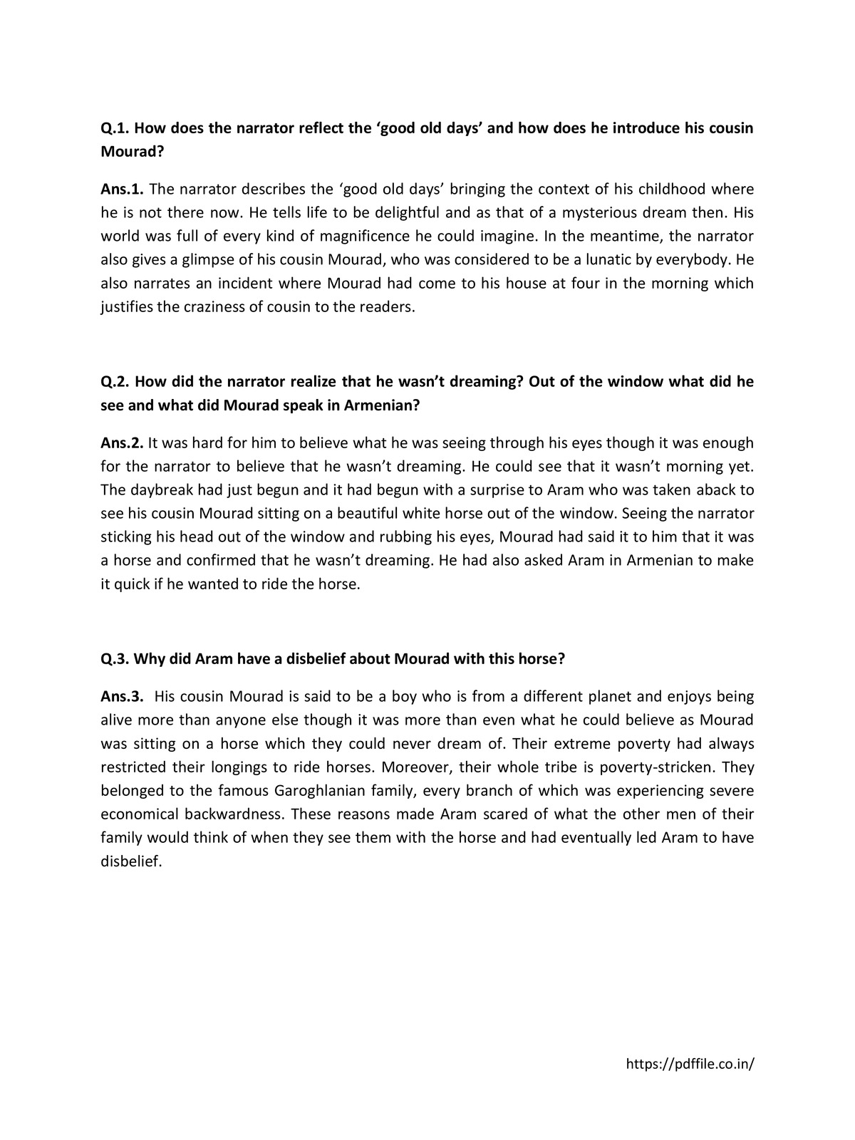 The Summer of the Beautiful White Horse Extra Questions and Answers pdf